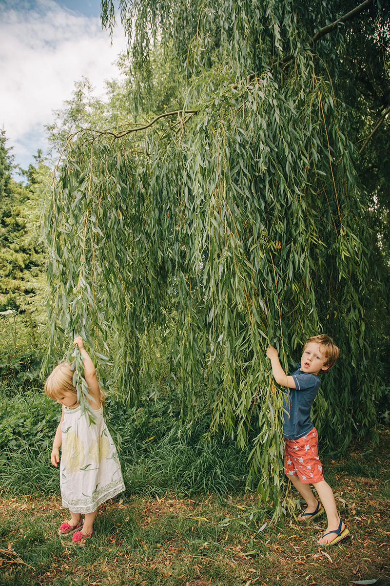 kids under willow tree family photoshoot